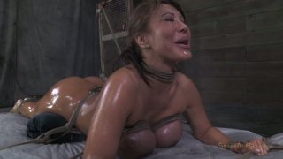 Oiled up and roped Ava Devine getting her pussy slammed