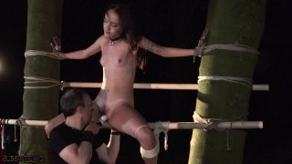 Sexy slave tied up to a tree and tortured